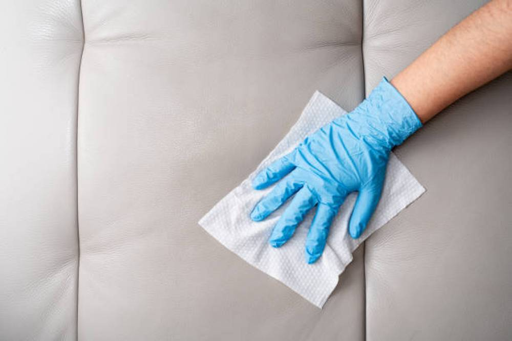 Why You Need a Professional For Quality Couch Cleaning Toorak